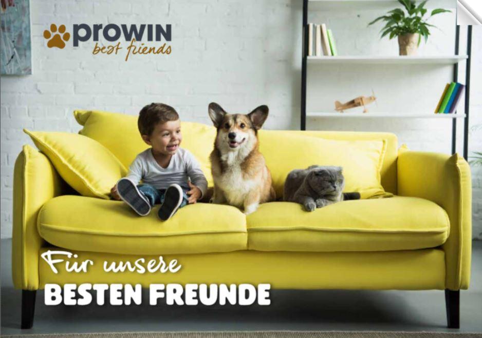prowin_smb